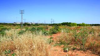 השטח המיועד לפרויקט