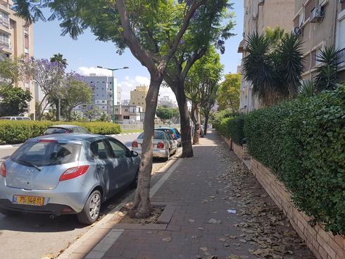 מסלול ההליכה במרכז העיר. צילום: אייל עצמון