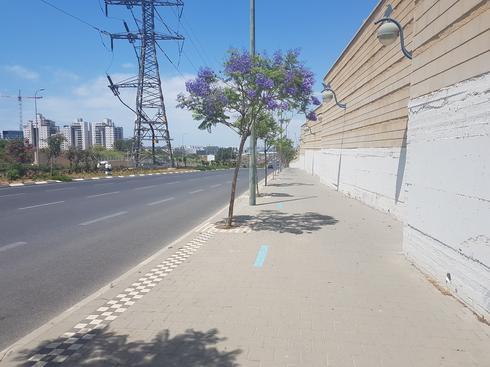 מסלול ההליכה בדרך יצחק רבין. צילום: אייל עצמון