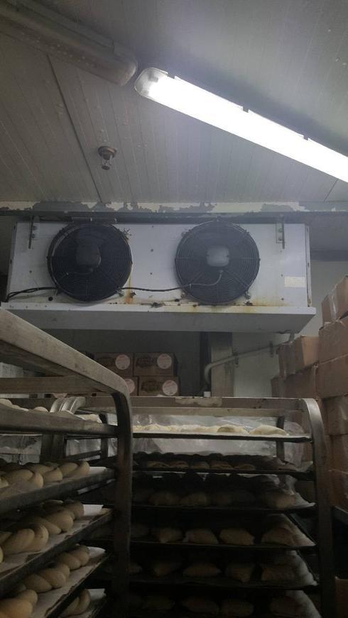 האופה מבגדד. צילום: דוברות עיריית פתח תקוה