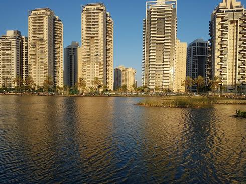 האגם האקולוגי פתח תקוה. צילום: ניצן ינקו